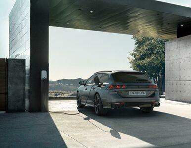 Cennik nowego Peugeota 508 PSE. Ile kosztuje najmocniejszy Peugeot?